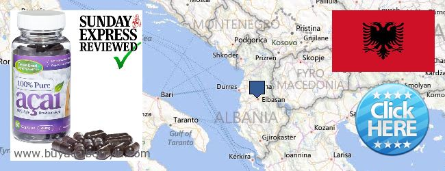 Where to Buy Acai Berry online Albania