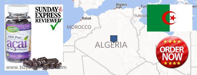 Where to Buy Acai Berry online Algeria