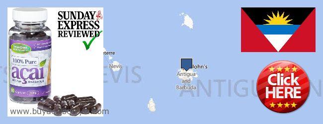 Where to Buy Acai Berry online Antigua And Barbuda