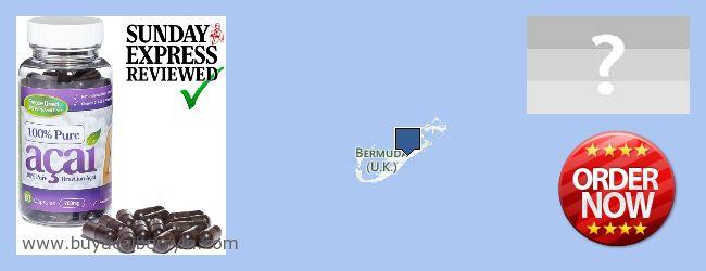 Where to Buy Acai Berry online Bermuda