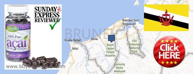 Where to Buy Acai Berry online Brunei