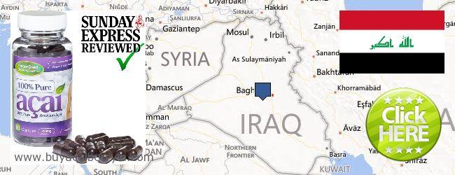 Where to Buy Acai Berry online Iraq