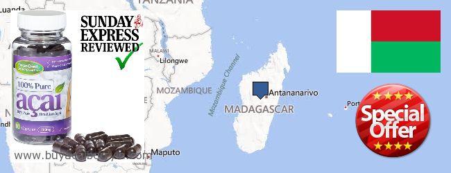 Where to Buy Acai Berry online Madagascar