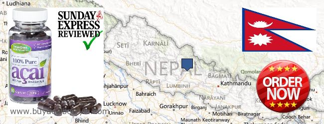 Where to Buy Acai Berry online Nepal