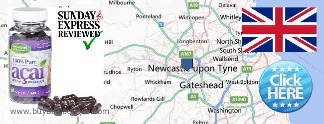 Where to Buy Acai Berry online Newcastle upon Tyne, United Kingdom