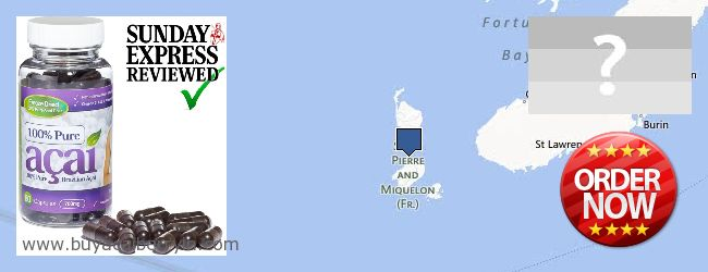 Where to Buy Acai Berry online Saint Pierre And Miquelon