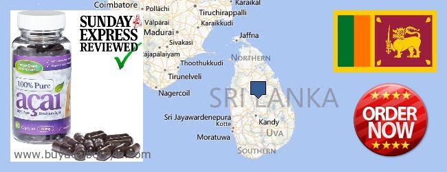 Where to Buy Acai Berry online Sri Lanka