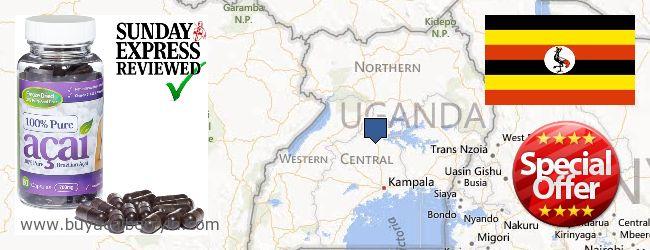 Where to Buy Acai Berry online Uganda